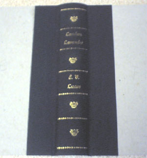The spine cloth on the boards.