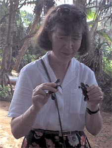 Ann with 2 two day old turtles